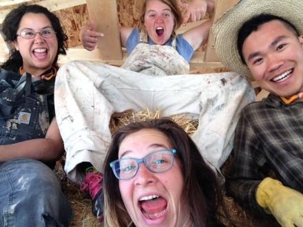 strawbale selfies